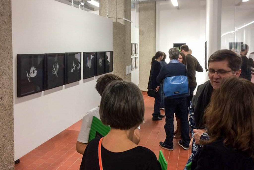 hans-kogler-vernissage-neophyta-Tschickgalerie-prager-fotoschule-Linz-3.jpg
